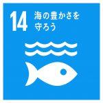 SDGs 14 海の豊かさを守ろう